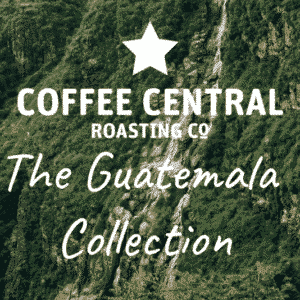 The Guatemala Collection